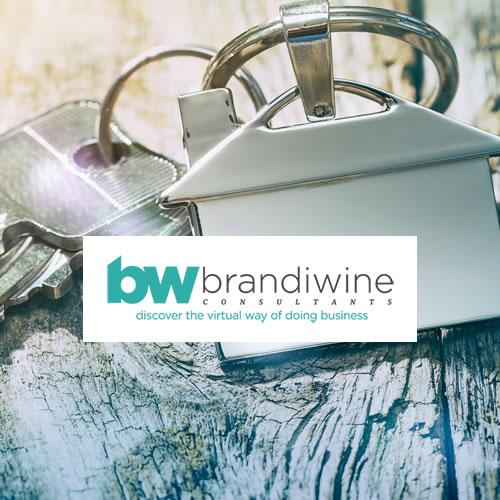 Brandiwine Consultants